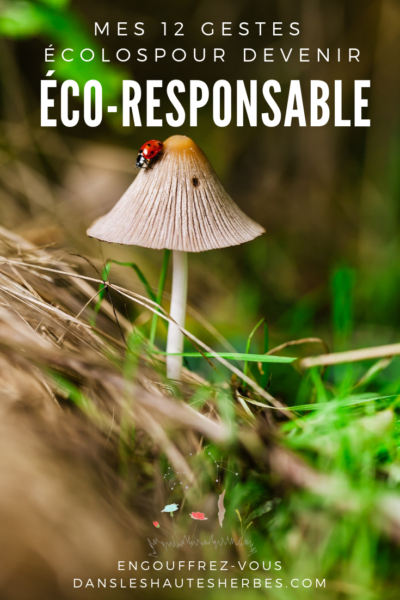 DEVENIR ECO-RESPONSABLE