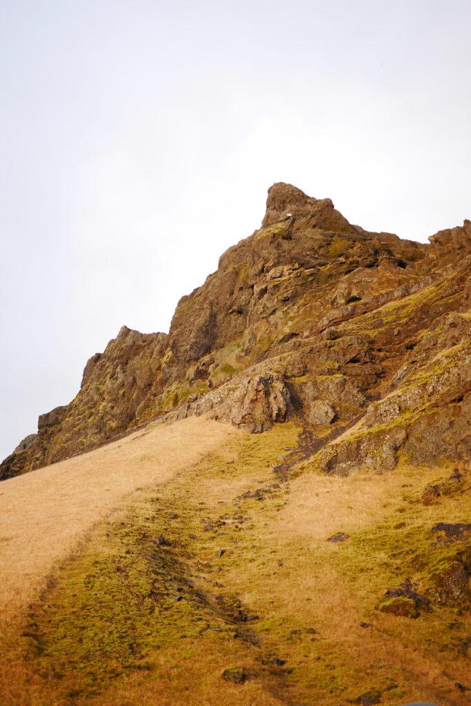 Islande Dans les hautes herbes voyages